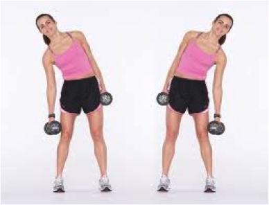 b7c71fad80 Gut – Dumbbell Side Dips Stand with feet together and dumbbell in each arm  down by your sides. Lower the weight in your right hand towards the floor  as far ...