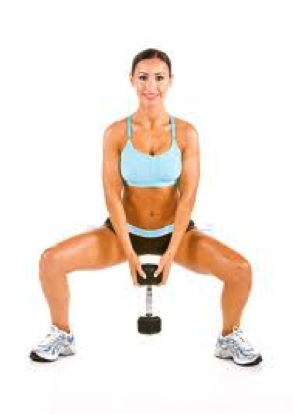 1c8f42025f Butt – Plié Squats Stand with feet slightly wider than shoulder width apart  with toes turned out