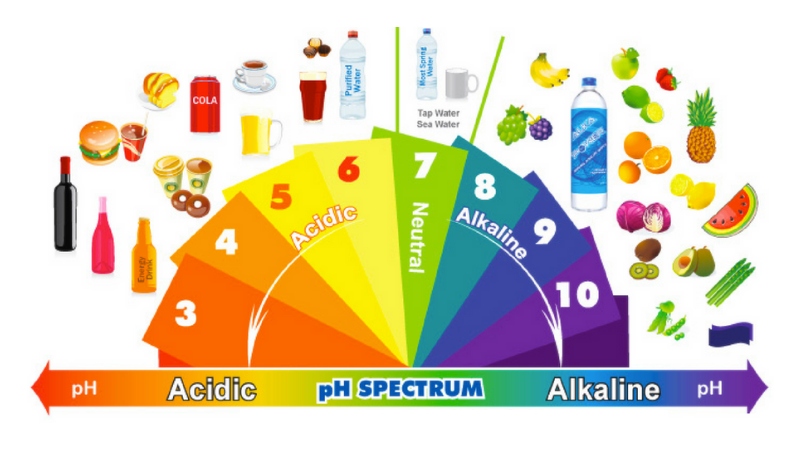 Chart showing range of healthy and unhealthy pH levels of acid